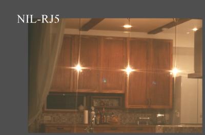 コンコルディア照明のペンダントライトの人気商品|NIL-RJ5