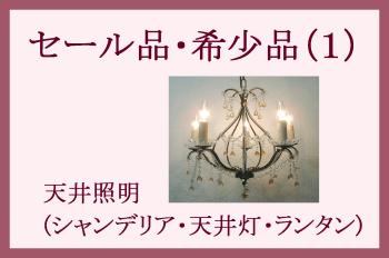 セール品・希少品-(1)