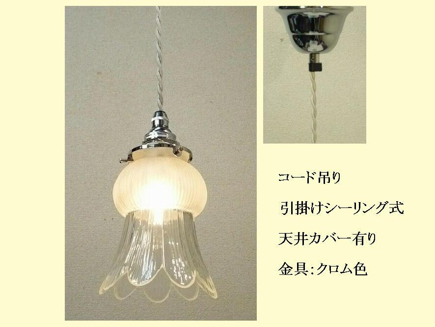 510/SAT-YRJ5