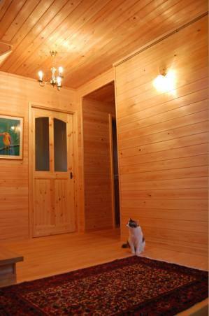 ログハウス風の玄関にはやはりシンプルなロウソク型のシャンデリアが似合いますpb801-3