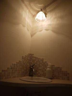 手洗いコーナーの照明 h-wb251+201.clr-2.jpg