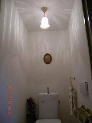 天井照明 トイレ t-i14-361ecog-pb391h-01.jpg