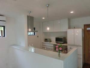 キッチンの照明として、すっきりした空間によく似合うシルバー系のペンダントライト2本