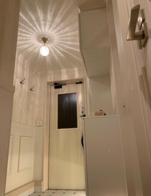 玄関の内装との相性が良い天井灯106E/SAT-PB393/H